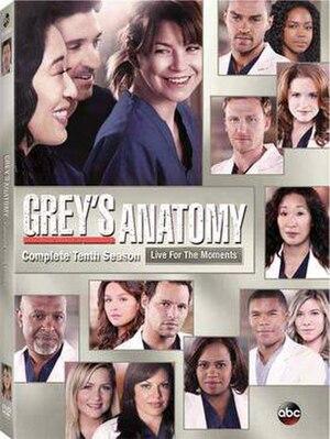 Grey's Anatomy (season 10) - Image: Grey's Anatomy Season 10