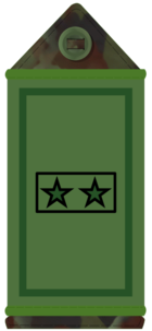 2* private IE-Army-OR2.png