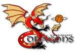 Vancouver Dragons logo
