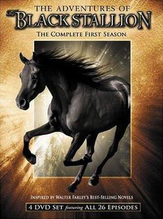 The Adventures of the Black Stallion - Season 1 DVD cover