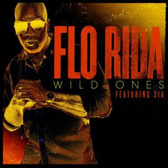 Flo Rida featuring Sia - Wild Ones (studio acapella)