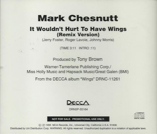 It Wouldnt Hurt to Have Wings 1995 single by Mark Chesnutt