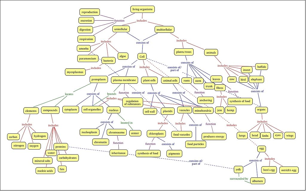 Cell Structure Concept Map File:Refined concept map cell structure and function.   Wikipedia