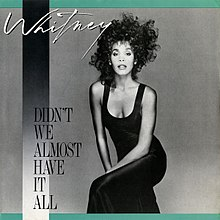 Whitney Houston - Didn't We Almost Have It All.jpg