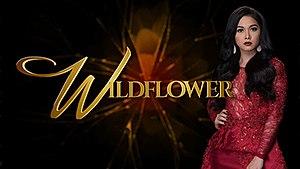Wildflower (TV series) - Image: Wildflower titlecard