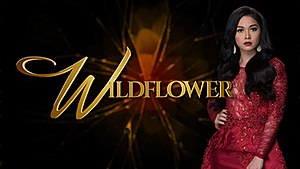 Wildflower (TV series)