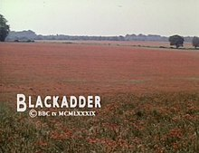 "A tranquil field of red poppies, and the text ""Blackadder"" with a copyright notice"