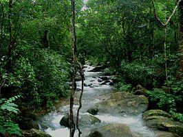 Kallar-river.jpg