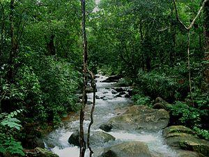Kallar, Trivandrum