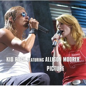Picture (song) - Image: Kid Rock Picture Single
