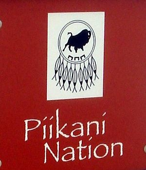 Piikani Nation - Shield of the Piikani Nation