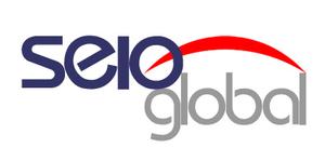 Seioglobal - Safesoft Global logo