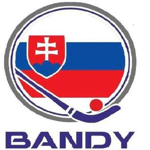 Trenčianske Teplice - Logotype of the national association for bandy, which is based in town