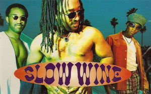 Slow Wine - Image: Slow Wine