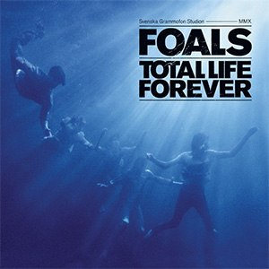 Total Life Forever - Image: Totallifeforever