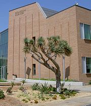 Arid landscaping in front of the Biological Sciences Building on the UCR campus (2007)