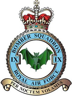 No. 9 Squadron RAF Flying squadron of the Royal Air Force