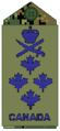 Air Force olive Gen.png