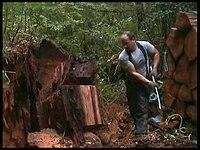 Cedar Shingles : Wood Shingles Dallas Texas