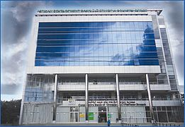 List of companies of Ethiopia - Wikipedia