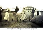 Erichsen slave labour p. 83 v2.jpg