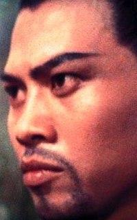 Lo Lieh Hong Kong actor