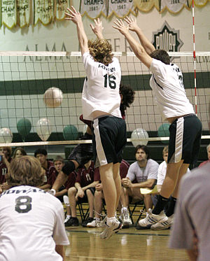 "Volleyball jargon - A hitter gets ""roofed"" by the blockers."