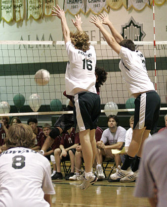 """Volleyball jargon - A hitter gets """"roofed"""" by the blockers."""