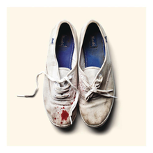 Sleigh Bells - Reign of Terror coverpng