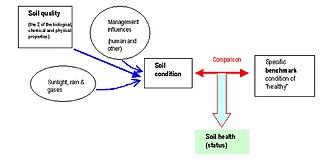 Soil health - Image: Soil Health Concept
