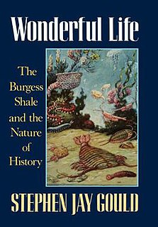 <i>Wonderful Life</i> (book) 1989 book by Stephen Jay Gould