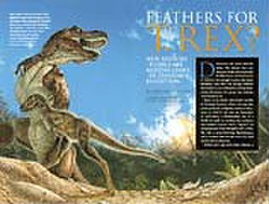 """Archaeoraptor - This article from the November 1999 issue of National Geographic was retracted after the fossil """"Archaeoraptor liaoningensis"""" was shown to be fraudulent."""
