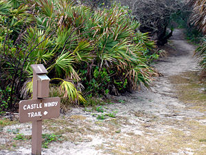 Canaveral National Seashore - Image: Canaveral National Seashore 3