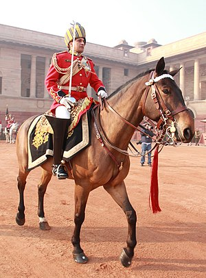 President's Bodyguard - Major Amit Bhardwaj moving towards forecourt of Rashtrapati Bhavan during full dress rehearsal on 23 January 2013.