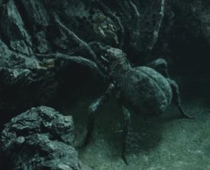 Shelob - Shelob fights Sam Gamgee in Peter Jackson's film adaptation of The Return of the King.