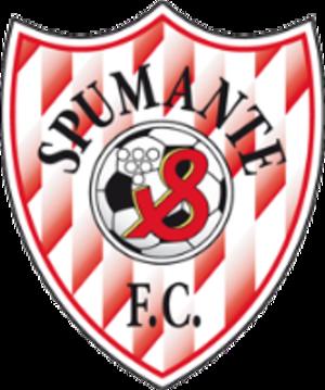 FC Spumante Cricova - Image: Spumante Cricova