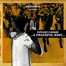 A Peaceful Riot CD COVER.jpg