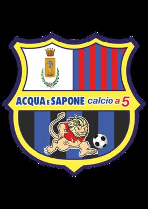 Acqua e Sapone Calcio a 5 - Image: Acqua 3 Sapone C5