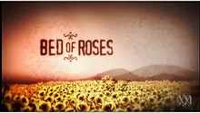 Bed of Roses TV series.jpg