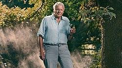David Attenborough de pie delante de un árbol