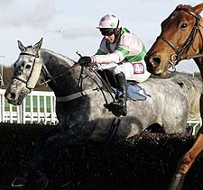 Tony Dobbin on Karelian in the 2007 WBX Novices' Chase. Tony dobbin on karelian.jpg