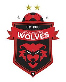 https://upload.wikimedia.org/wikipedia/en/thumb/e/ed/Wollongong_Wolves_FC.jpg/220px-Wollongong_Wolves_FC.jpg