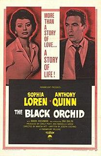 <i>The Black Orchid</i> (film) 1959 film by Martin Ritt