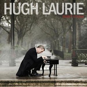 Didn't It Rain (Hugh Laurie album) - Image: Didnt It Rain Hugh Laurie