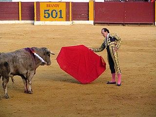 Frank Evans (bullfighter) British bullfighter