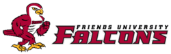 Friends falcons logo.png