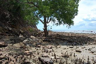 Tanjung Tuan - Cape Rachado