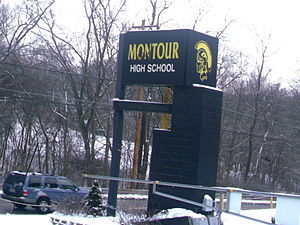 Montour High School - Montour High School's Sign