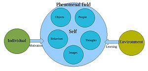 The phenomenal field. Based on information fro...