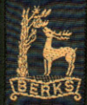 Scouting in South East England - County badge as worn on the uniform of Scouting members in Royal Berkshire